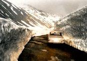 auto-auto-im-goldwinterlicht-h-300